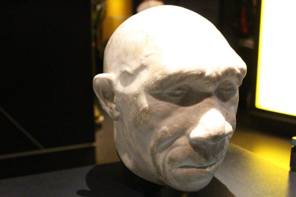 First Speakers: Homo Heidelbergensis