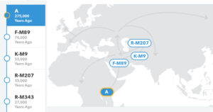 Haplogroup A, screenshot from 23andme.com