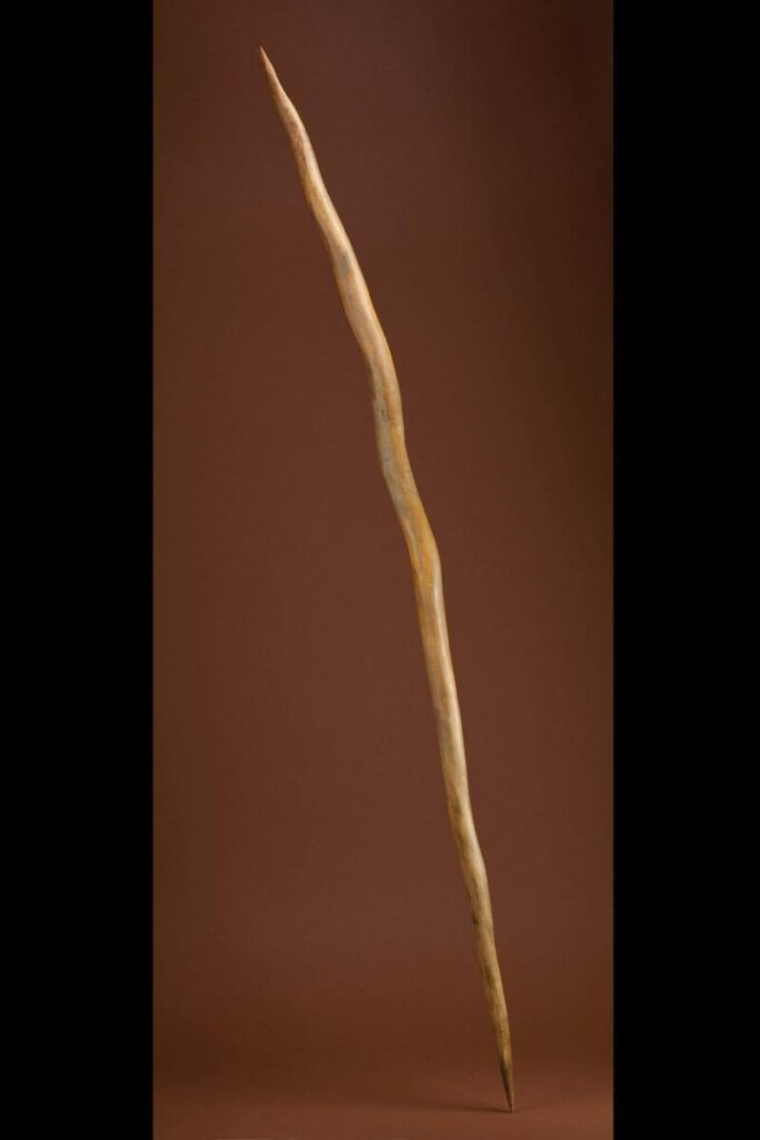 Oldest Surviving Spear