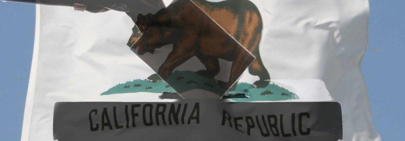 California Voter ID